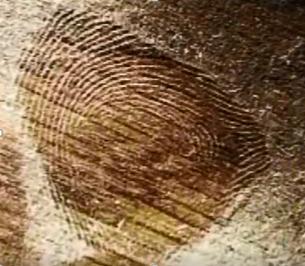 Prescott_Fingerprint